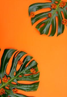 Тропический оранжевый фон