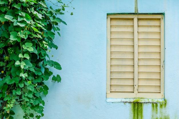 家の外の窓