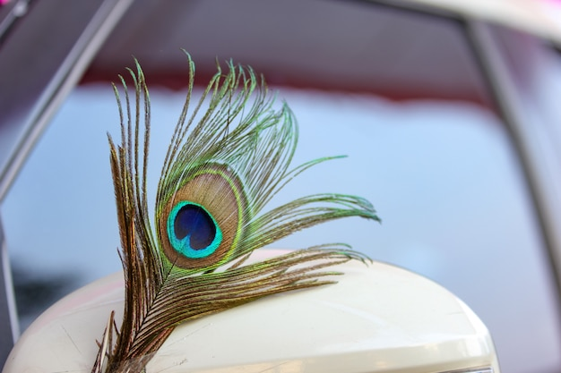Свадьба в махараштре: павлинье перо