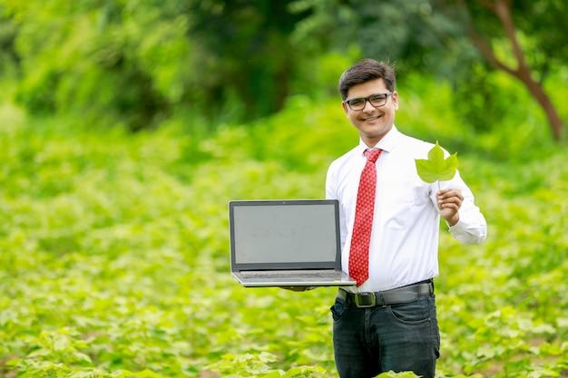 Агроном показывает экран ноутбука в зеленом хлопковом поле