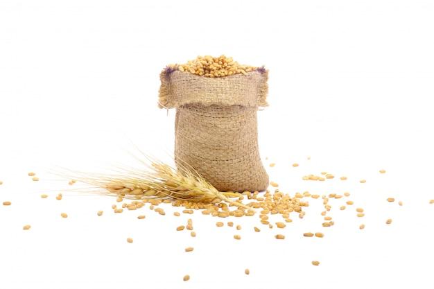 袋の小麦粒