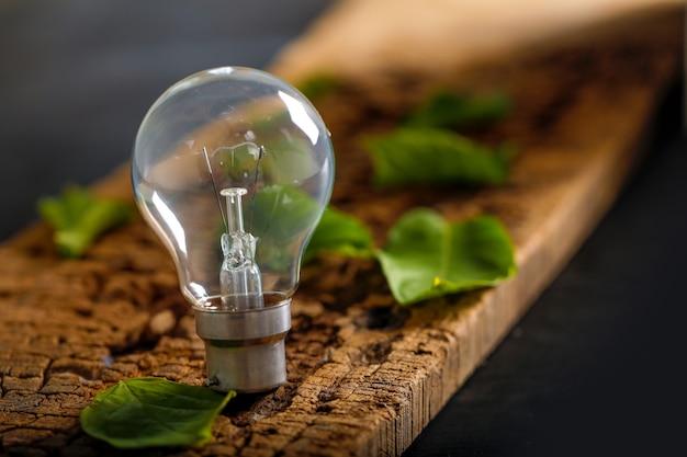 木製のテーブルの上の緑の葉と電球