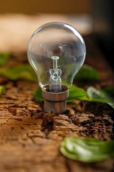 木製の背景に緑の葉と電球