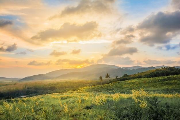 朝の日の出の美しい風景の山の景色、霧と牧草地。