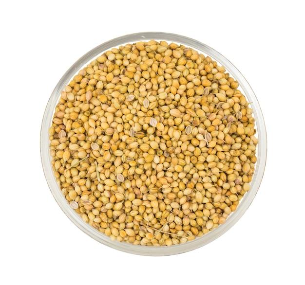 乾燥コリアンダーの種またはダニヤ