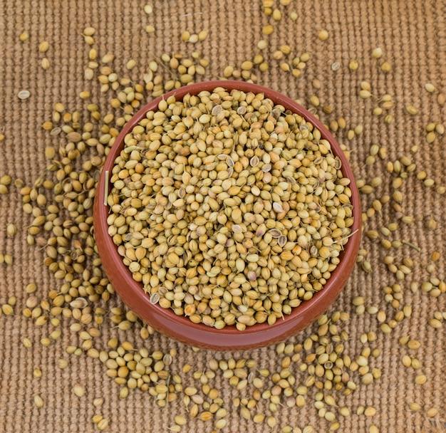 乾燥コリアンダーの種