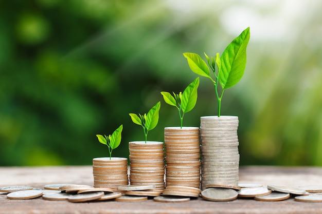 お金の概念を保存するための太陽光線とコインスタックで成長している木