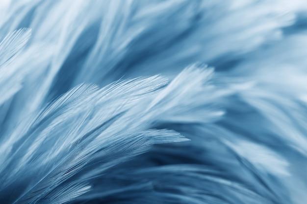Синие куриные перья в мягком и размытом стиле для фона