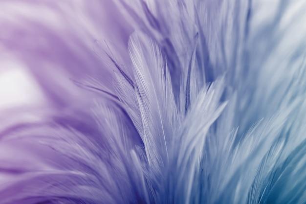 パステルカラーのチキンの羽の色と背景のぼかしスタイル