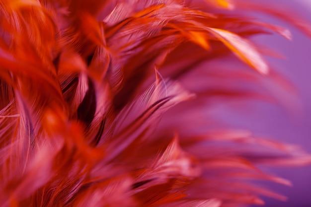 カラフルな背景、抽象的な羽毛テクスチャのスタイルと柔らかい色をぼかし