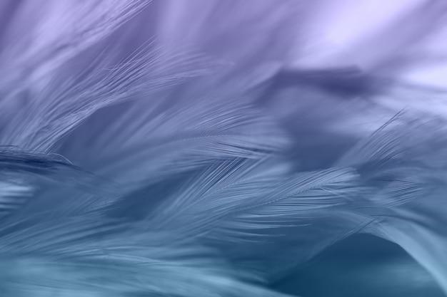 Красочные птичьи и куриные перья в мягком и размытом стиле для фона