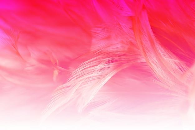 背景、柔らかい色とぼかしのスタイルの抽象的な鶏の羽の質感