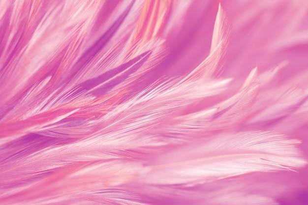 背景には、抽象芸術の柔らかいぼかしスタイルの鶏の羽