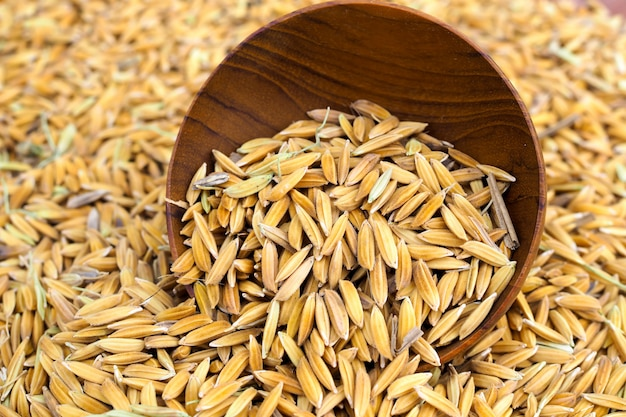 木製のボウルの背景に水田の種子