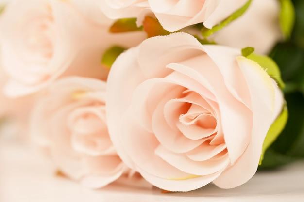 甘い色のバラは柔らかく、背景のぼかしスタイル