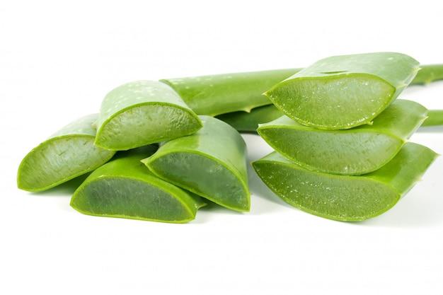 Зеленый свежий лист алоэ вера. травы для здоровых