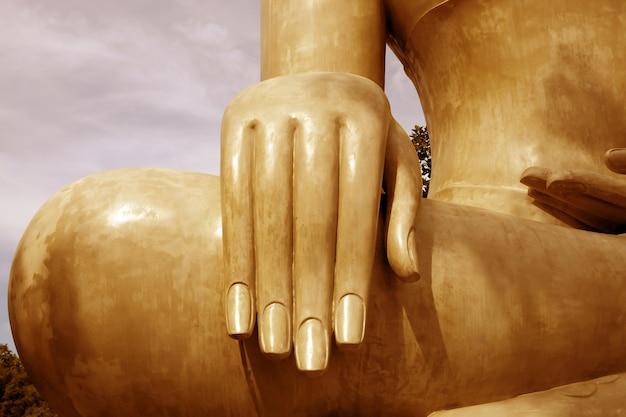 仏の手、選択的な焦点