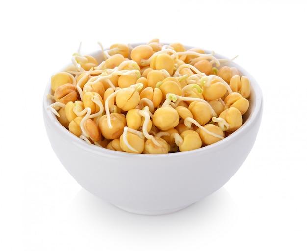 ホワイトスペースのボウルに発芽したひよこ豆