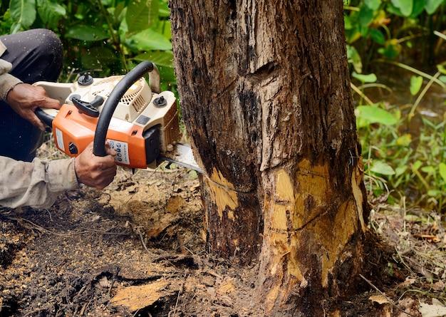Человек с бензопилой рубит дерево