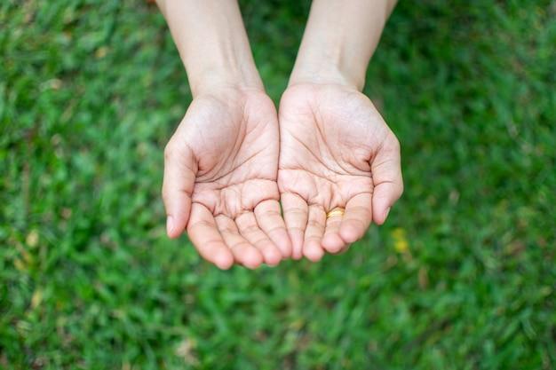 緑の芝生の背景に平和の概念を待っている女性の手。
