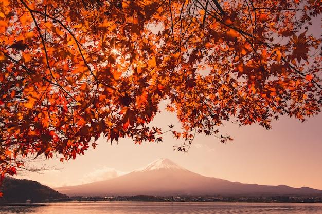 日本の秋の富士山と赤いカエデの木の夕日