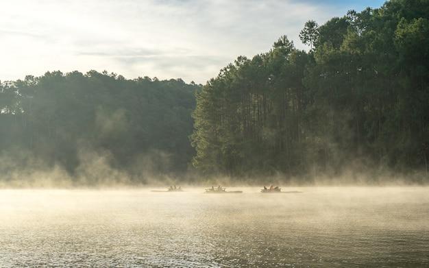 Силуэт гор и соснового леса в панг унг, мае хонг сон, таиланд.