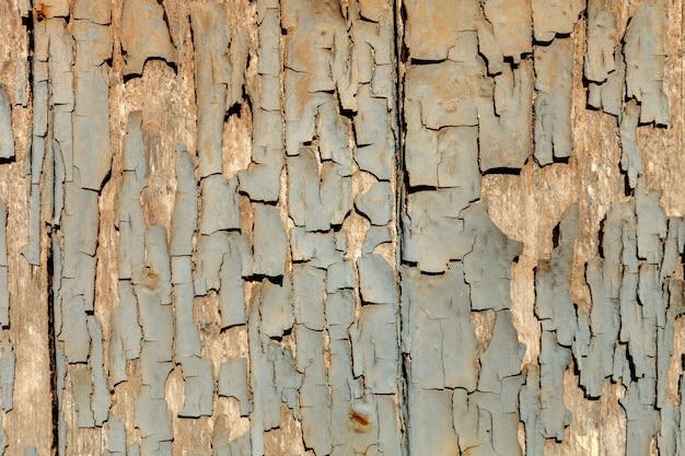 壁紙の木の壁紙
