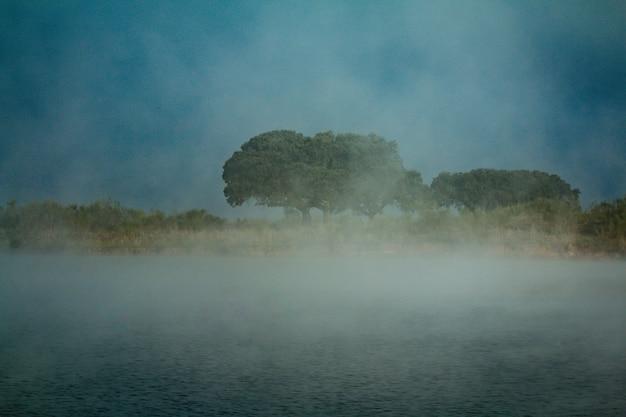 多くの霧が水の上にある川