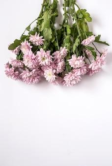 Цветочный фон с розовыми цветами