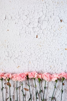 白い背景に花。フラットレイ、上面図