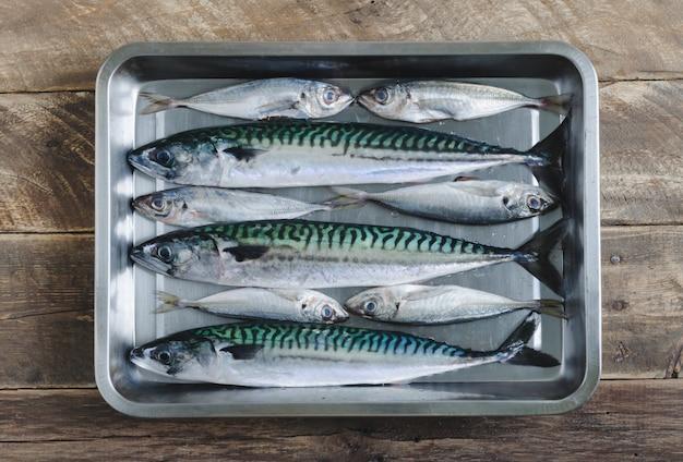Свежая рыба нескольких видов в металлическом лотке. вид сверху.