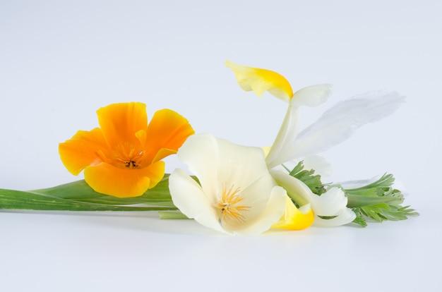 白い表面に花の花束。フラット横たわっていた。