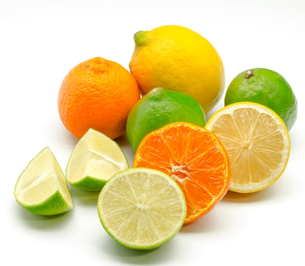 柑橘類の品揃え