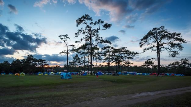 国立公園のテント。