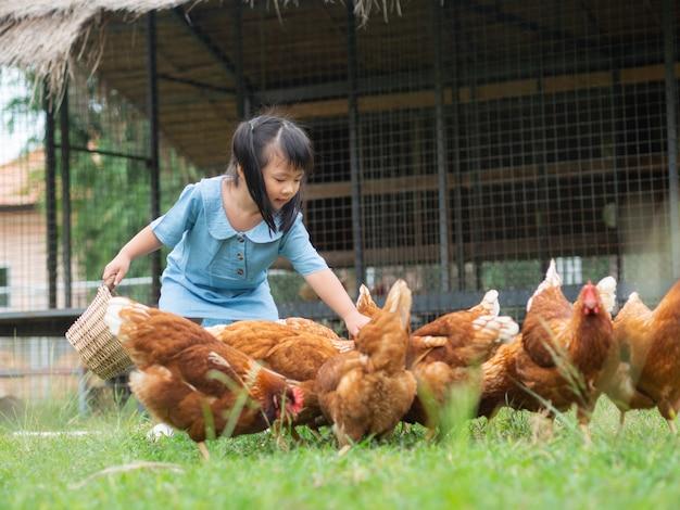 幸せな少女は、農場で鶏を食べています。農業、ペット、ハッピーキッドのコンセプト。