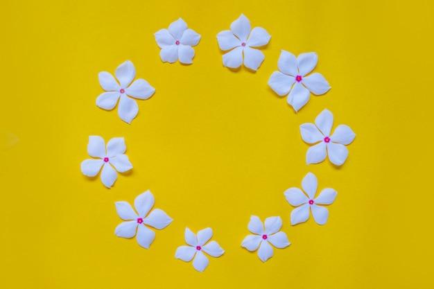 黄色、サークルフレームの花のかわいい白い花