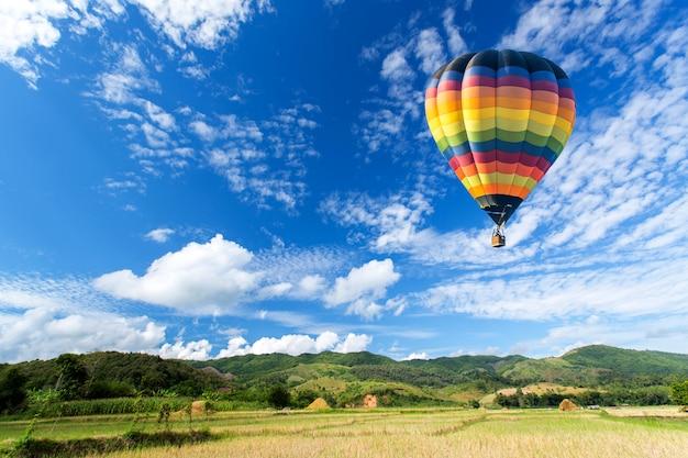 青い空とフィールド上の熱気球