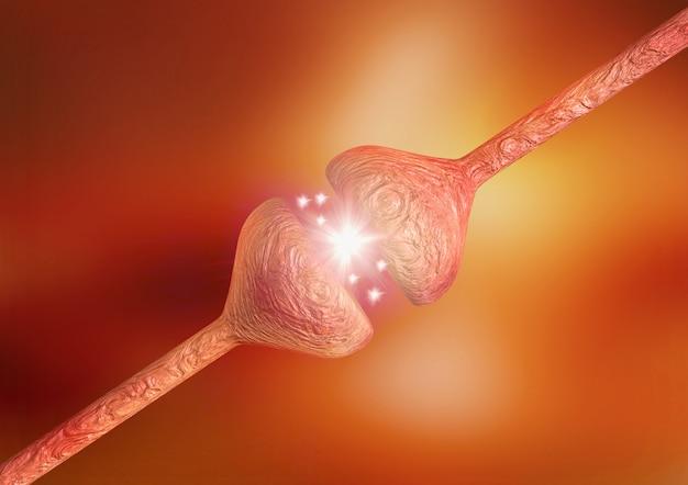 Нервные синапсы, сбой в их функционировании