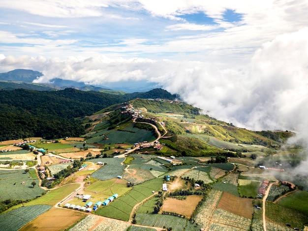 風景、野菜畑、森林、山、雲の空中写真。自然と農業の物語。