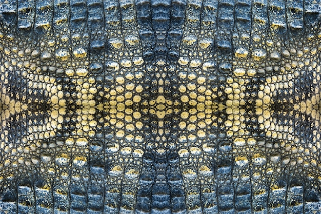 ワニ皮パターン