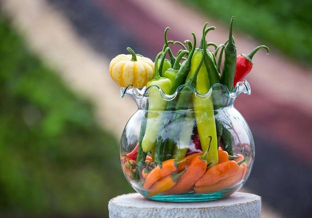 チリとハーブの植物をグラスで飾ります。