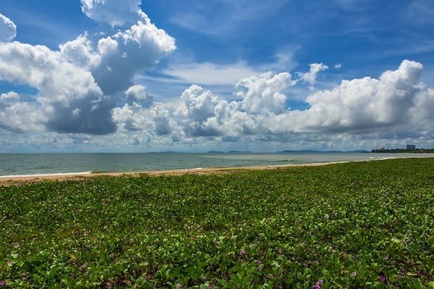 青い空の雲と海の波。