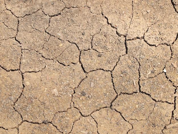 乾燥ひびの入った地球の背景