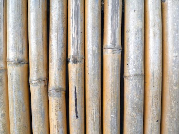 Бамбуковый забор