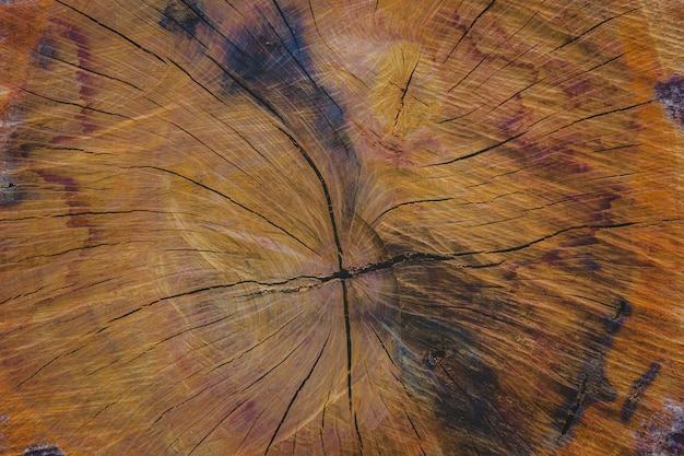木の背景のテクスチャ