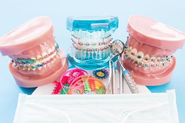 歯列矯正モデルと歯科医ツール - 歯列矯正ブラケットまたはブレースの種類のデモンストレーション歯モデル