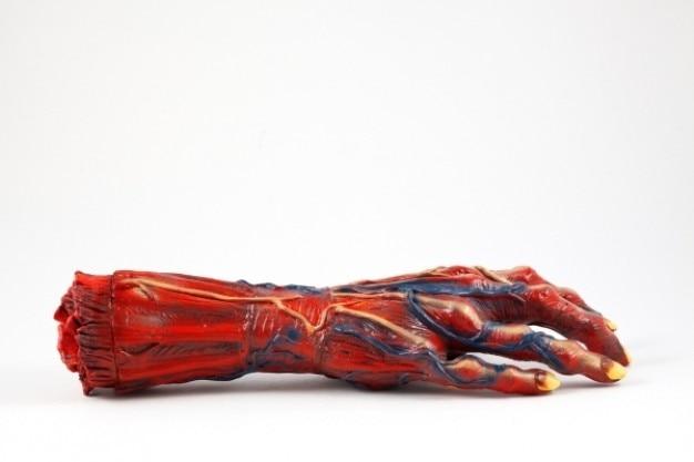 Гниющей рукой опору