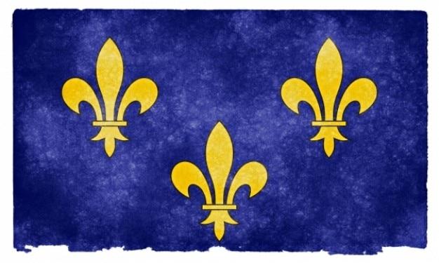Иль де франс гранж флаг