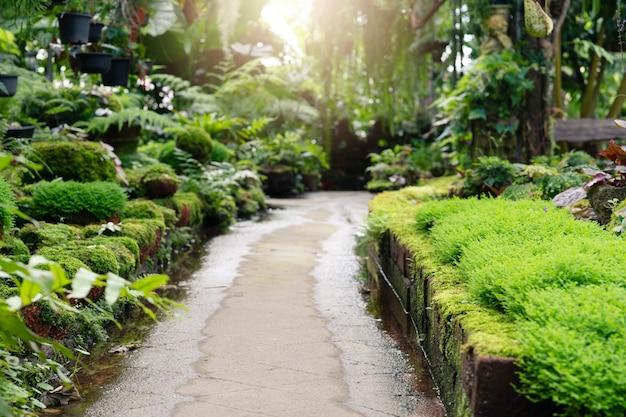 庭の歩道パス