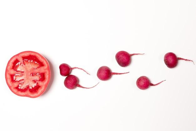 卵に向かって泳ぐ精子、紅い巨大な赤い大根、赤いトマトの野菜